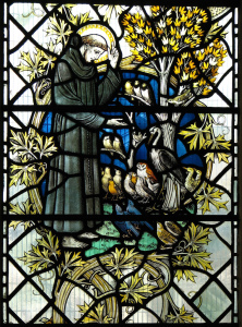 St. Francis and his sermon to the birds.  Photo courtesy Lawrence OP.